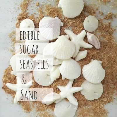Edible Sugar Seashells